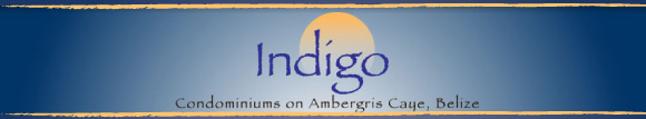 Indigo Luxury Condominium Homes